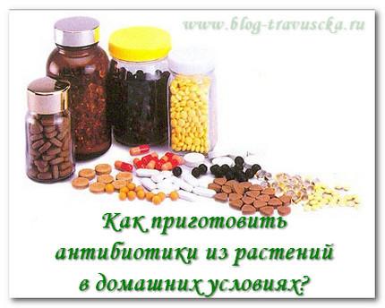 Антибиотики домашних условиях