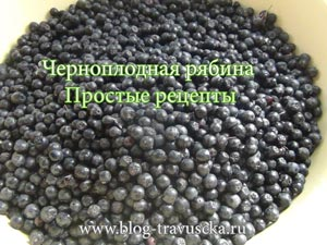 простые рецепты из черноплодной рябины