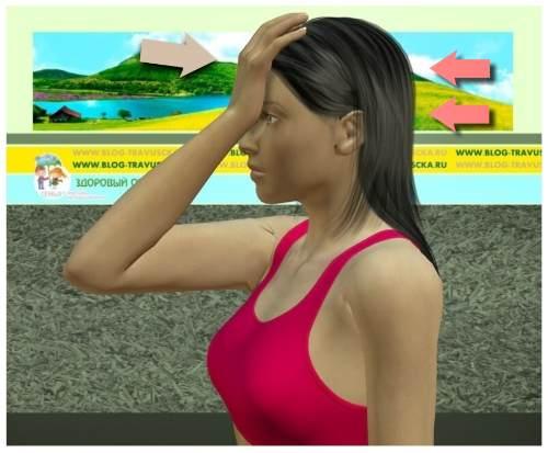 Упражнение 4 для шеи