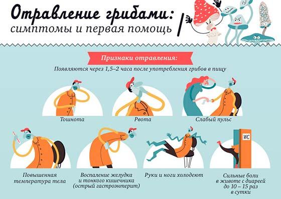 Как лечить понос (диарею) у котенка 35