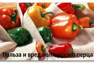 Незаменимая польза болгарского перца и какой вред несет для здоровья человека
