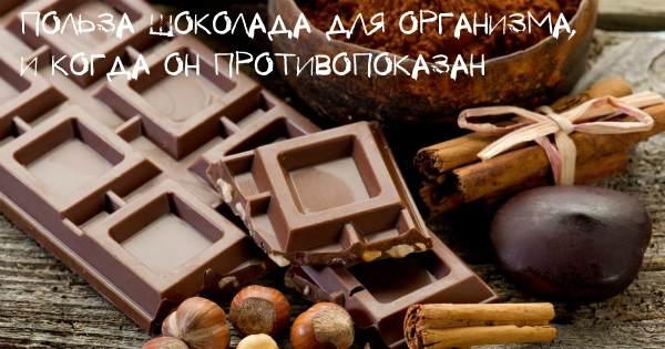 Польза шоколада и вред для организма
