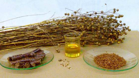 semene lna rezepti