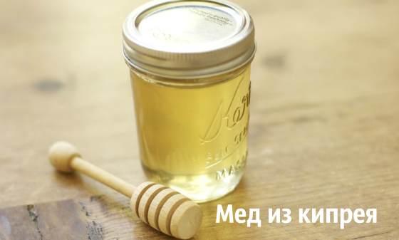 Мед из кипрея