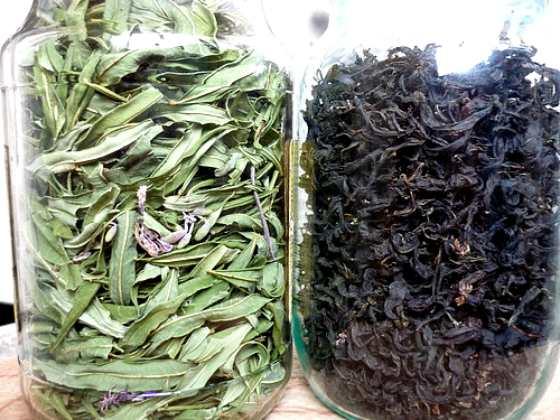 Как отличить настоящий иван чай