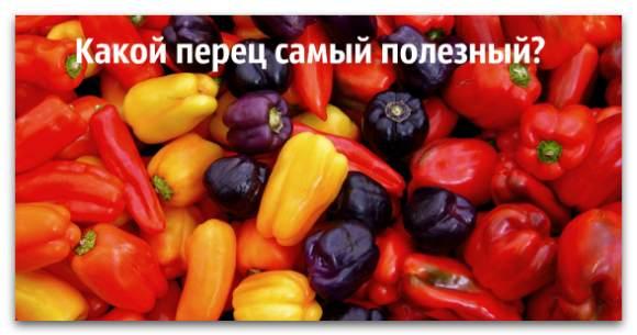 Полезный болгарский перец